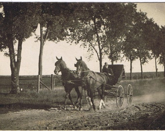 RPPC - Buggy Stirring Up Dust - Young Man - Covered Buggy with Top Down - HarnessTeam Horses - Circa 1904 - 1920