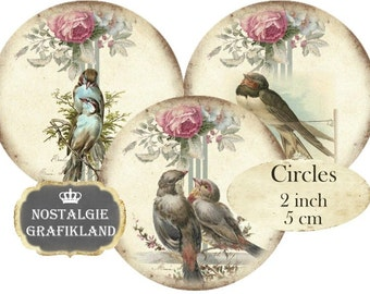 Circles 2 inch Birds Shabby Chic Vintage Robin Instant Download digital collage sheet C187