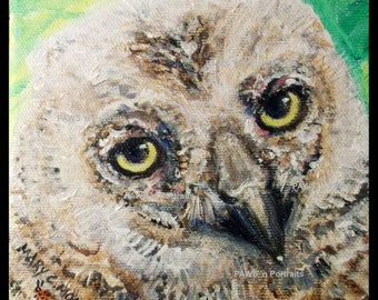 PRINCIPIO Great Horned nestling 2017 Season 5 ~ Original, hand-painted, One-of-a-kind!  5x5 inches  FREE shipping USA