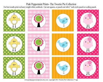 New INSTANT DOWNLOAD The Tweetie Pie Collection PRINTABLE Party Circles