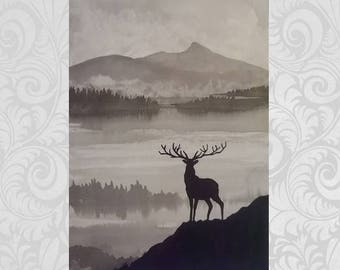 Magestic Stag
