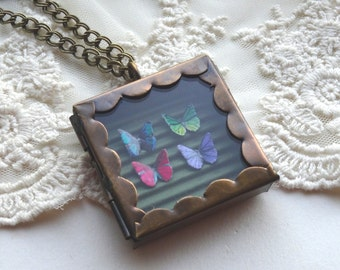 Butterfly Specimen Necklace