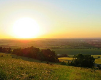 Meadow Sunset, photo print, green, warm, Wiltshire, England, wall art, gift, charity donation to Wiltshire Wildlife Trust