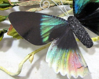 Butterfly Embellishments Fantasia