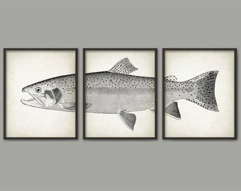Steelhead Trout Art Print Set Of 3, Trout Fly Fishing, Rainbow trout, Sport & Game Fishing, Fishing Print, Angling Art, Fishing Gift AB559