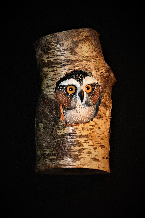 Custom for Drew- Screech Owl