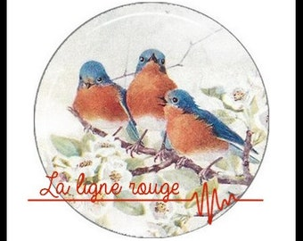 Shabby bird (2642) - Bird, Vintage Cabochon with or without stand depending on your choice
