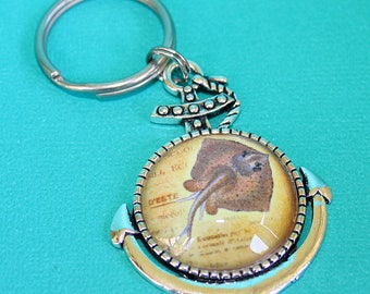 Stingray Anchor Necklace or Key Chain - Glass Cabochon Pendant - You Choose Necklace or Key Ring
