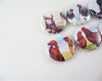 7 Rooster and Hen Magnets  / Chicken in the Farmyard 1131