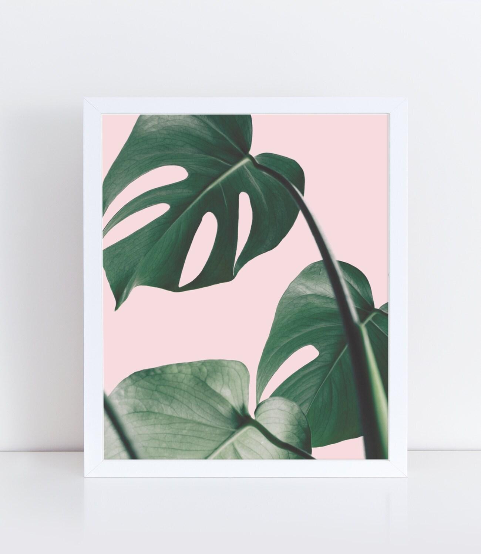 Impresión de Monstera plantas en femenino rosa Botánico