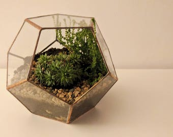 Glass Terrarium, Succulent Terrarium, Handmade Geometric Terrarium