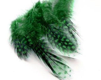 """Dyed Green Guinea Hen Feathers 2-4.5"""" 