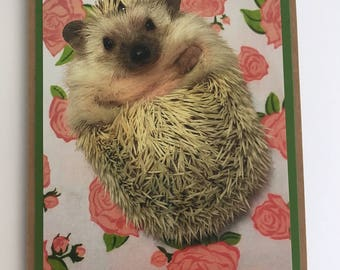 Set of 8 blank, folded hedgehog note cards. Matching envelopes included