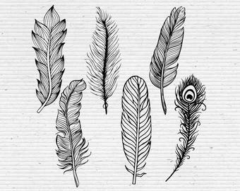 Hand-Drawn Feathers, Detailed Feather Sketches, Digital Cliparts and Vectors in jpg, png, pdf, and eps