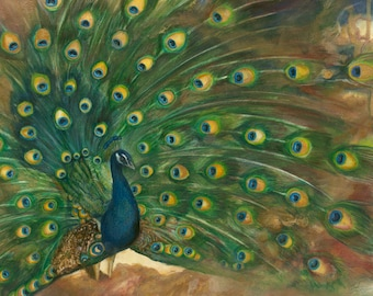 """Giclée print of original drawing by Amber Gorsline - """"Peacock"""""""