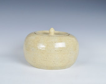 Ceramic lidded container, stoneware cookie jar, ceramic storage jar