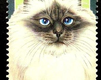 Birman cat -Handmade Framed Postage Stamp Art 17425