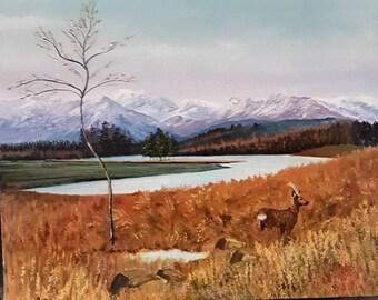 Canada Nature Reserves - acrylic canvas