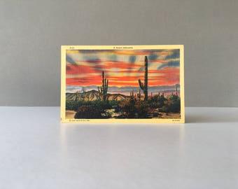 Vintage Linen Cactus Post Card, Saguaro Cactus, Sahuaro Cactus, Desert Scene,Cactus Print, Cactus Decor, Vintage Cactus, Cactus Picture