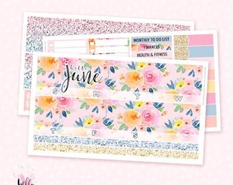 June Monthly Sticker Kit - 3 sheets / for the Vertical Erin Condren