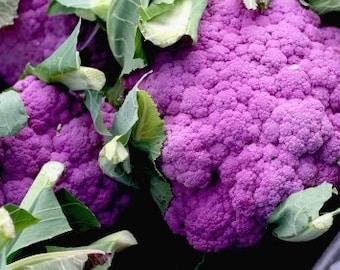 Broccoli seeds,red broccoli, violet queen seeds, 404,non gmo red broccoli seeds, heirloom broccoli, greek broccoli, purple broccoli seeds