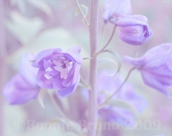 Nature Photography - Dreamy Lavender Delphinium fine art print - floral home decor - wall decor - purple decor