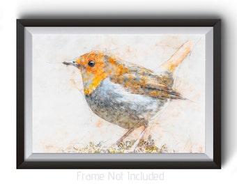 Bird painting, robin painting, bird image, bird on branch, Red Breasted Robin, Red Robin Painting, Robin Print, Red Robin Print, Bird Art