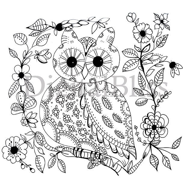 adult coloring download whimsical owl adult coloring page  spring owl coloring page  owl to