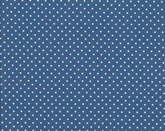 Blue Polka Dot Fabric - Polka Dot Fabric - Swiss Dot Fabric - Riley Blake