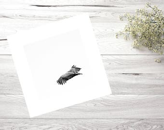 30X30, Nature, Photography, Bird, Black and White