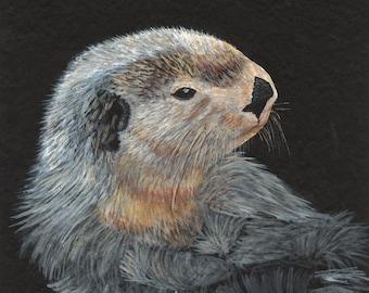 "Alaska Sea Otter  The original acrylic painting is 12"" x 9""."