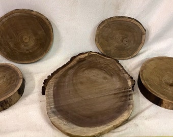 Black Walnut Wood Slices various sizes available