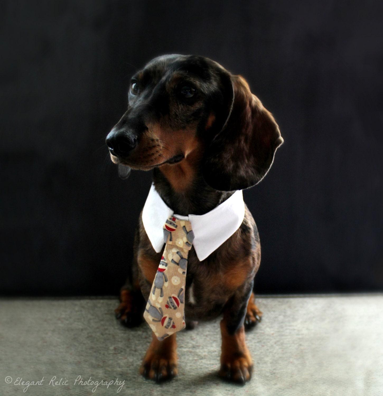 Sock monkey pet necktie collar dog tie collar dog necktie zoom ombrellifo Image collections