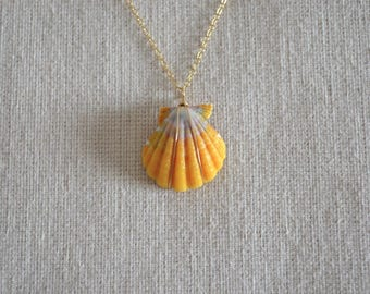 Sunrise Shell Necklace, Gold Filled Chain