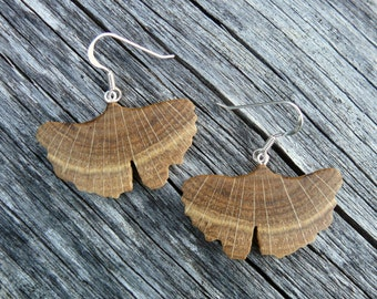 Ginkgo leaf earrings, Sterling Ginkgo earrings, Ginkgo leaf jewelry, Boho Wood earrings, Sterling silver leaf earrings, Herbalist Gift
