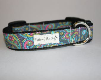 Colorbook Paisley DoG Collar