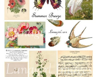 SUMMER BREEZE digital collage sheet, DOWNLOAD vintage images, antique ephemera printable art, butterfly wings, flowers birds feathers, music