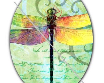 18x25cm, dragonfly, a green background