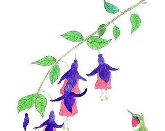 Fushia with hummingbird