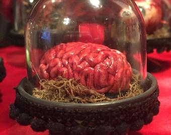 Human Brain Halloween Ornament Body Parts Props OOAK Creepy Scary Bloddy