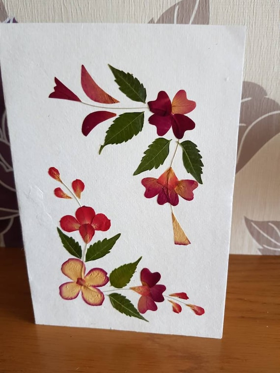 Real pressed flower greetings card blank inside two corner design