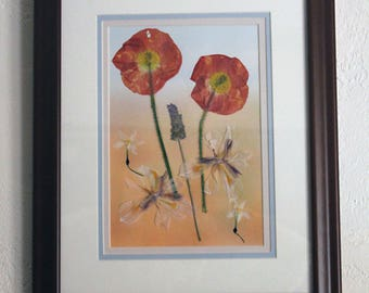 Fiery red Ranunculas on a hilltop pressed flower framed picture