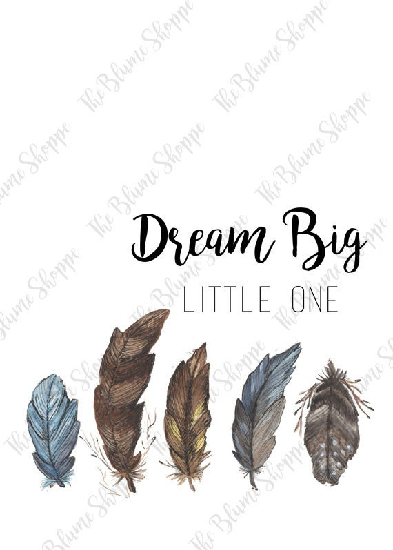 Dream Big Little One, Feathers