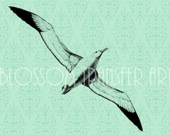 Seagull - Digital Vintage Graphics - Iron on Transfer - Download for papercrafts - Printable Graphics - DIY -  2441