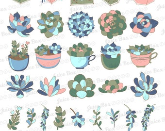 Set of 34 Assorted Succulents Stickers