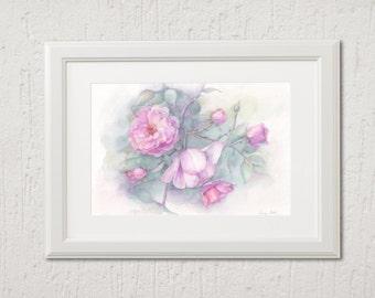Original watercolor, Pink roses 26 cm x 18 cm