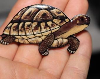 Hermann tortoise Magnet Gift for turtle tortoise lover for Locker Car or Fridge Tortoise loss memorial