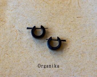 Horn Pair Pin Earrings