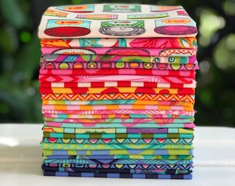 Tabby Road by Tula Pink FQ Bundle