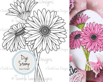 Daisy, Digi Stamp, Daisy Clipart, Gerbera, Floral Clipart, Flower Digital Stamp, Colouring Page, Spring Flowers, Craft, Gardening, Botanical